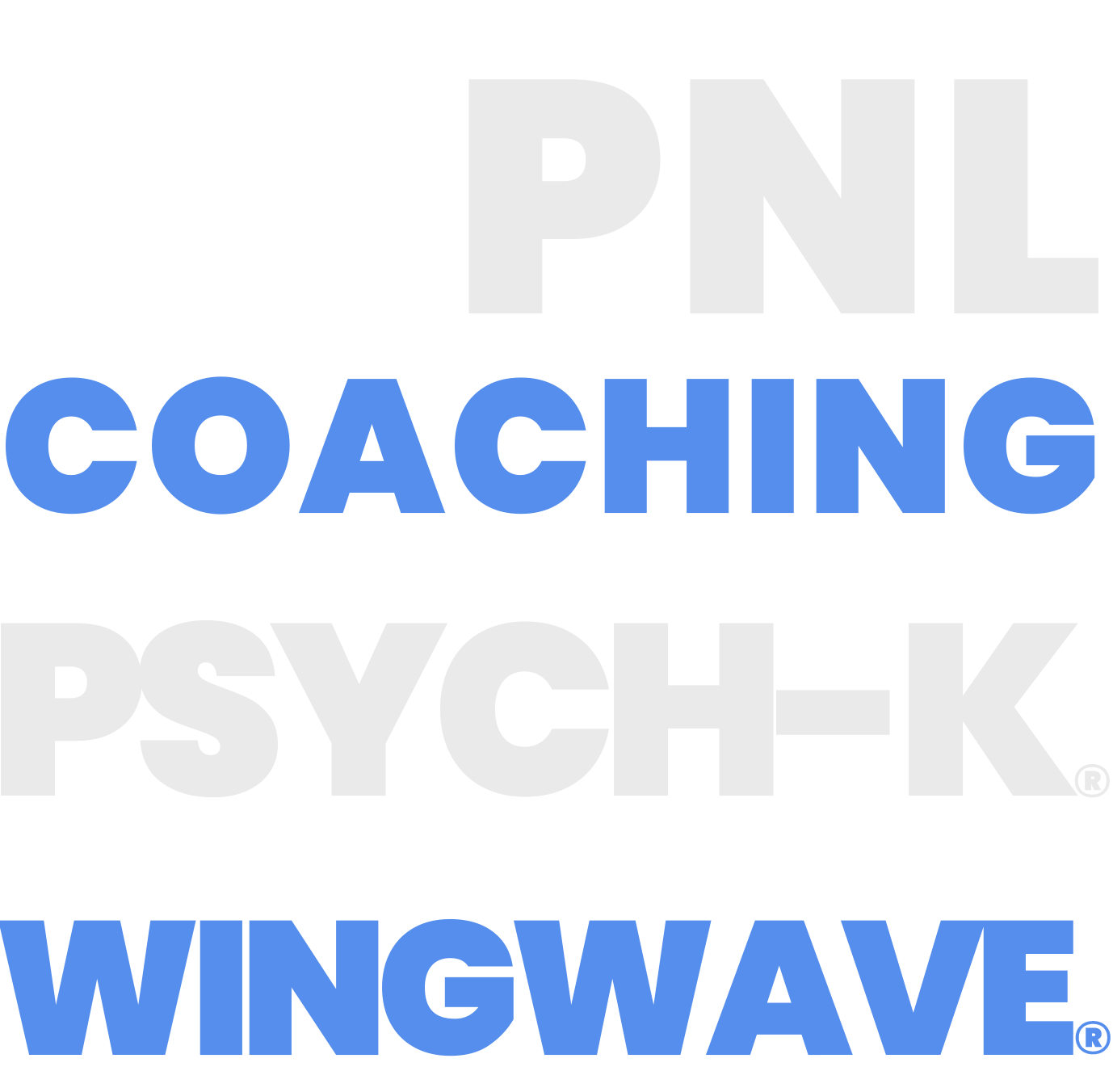 coaching pnl psyck-k wingwave